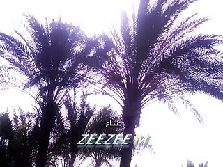 Zeezee M